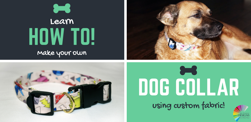 DIY Dog Collar!